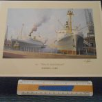 HAL: Nieuw Amsterdam signed Stephen Card Print