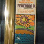 Costa Line: Frederico C Early 1975 Deck Plan Fold Out