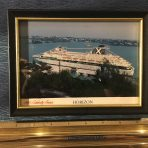 Celebrity Cruises: Horizon framed picture