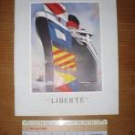 Liberte: Intro into service Brochure
